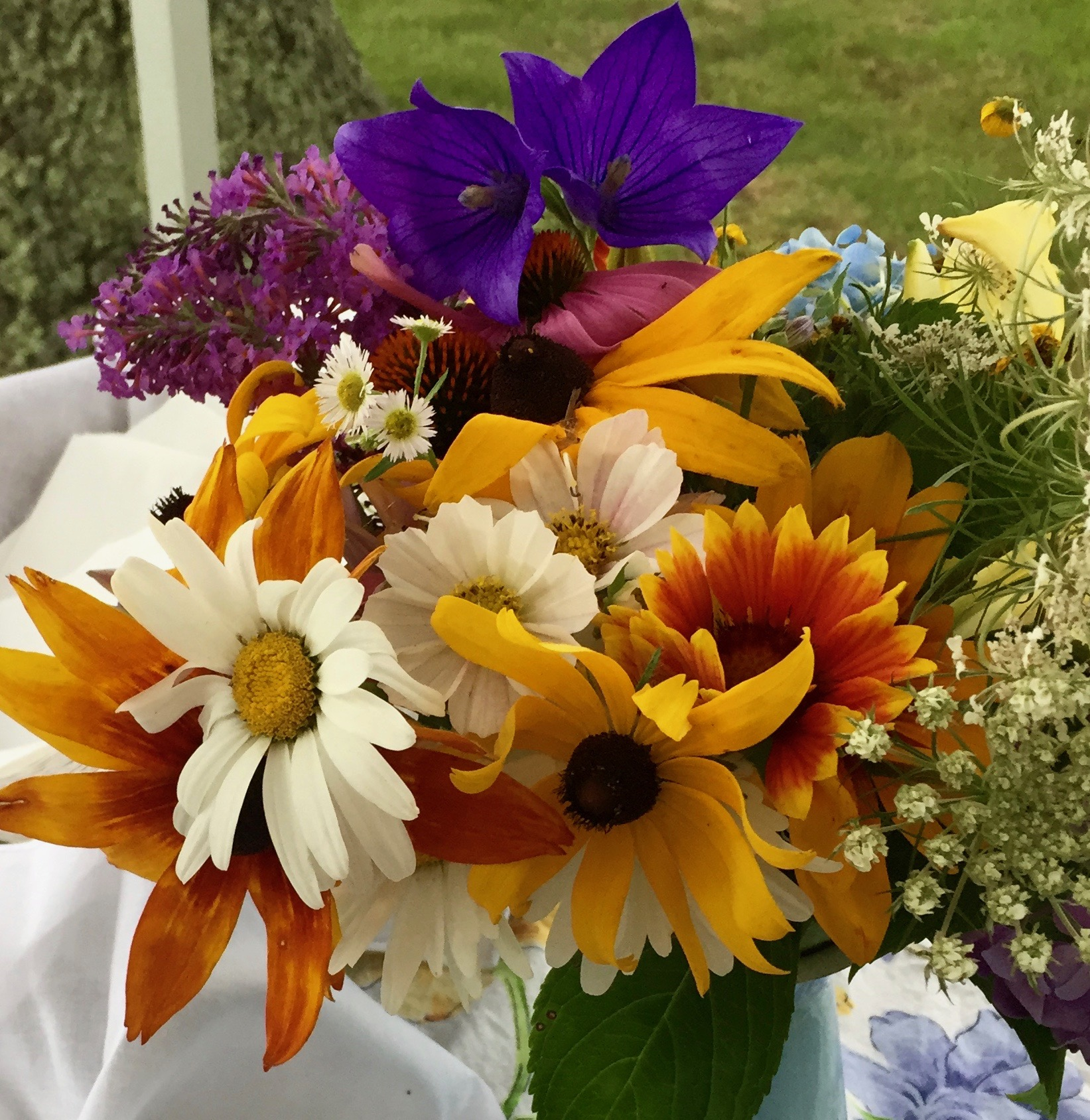 Our Farm Even Has Beautiful Wild Flowers