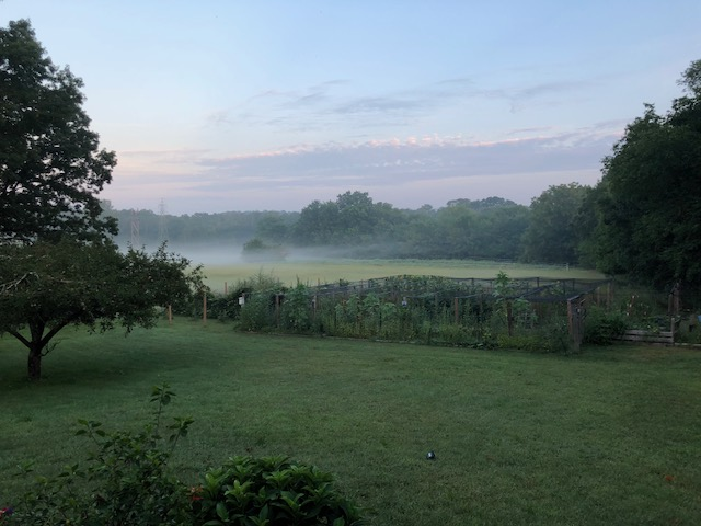 Even in the Mist, Our Farm is Breathtaking