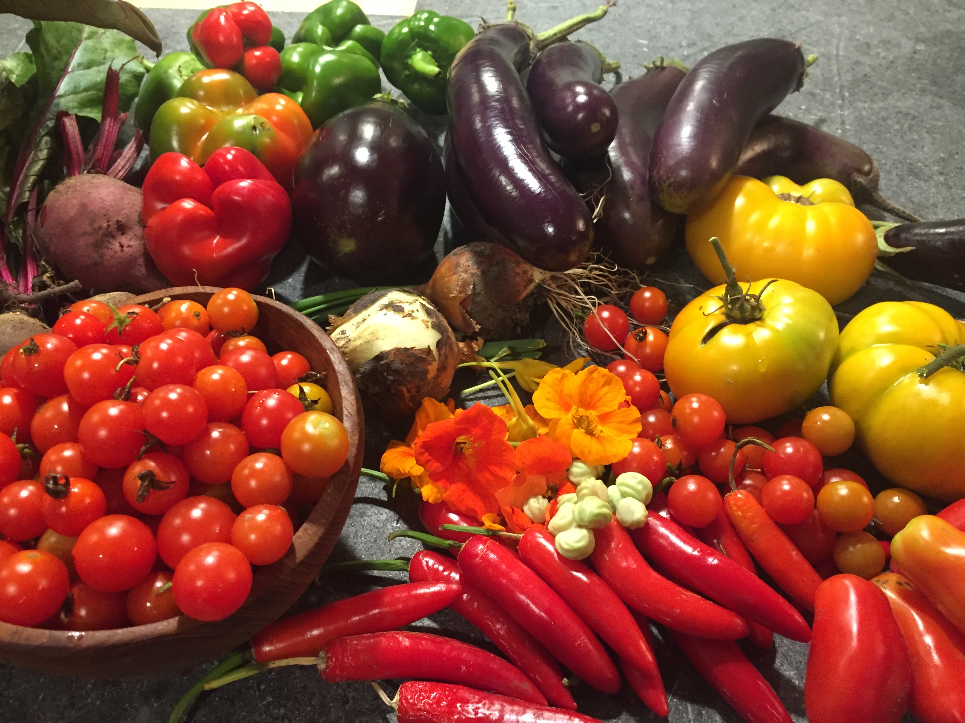 Fresh Vegetables from Our Farm